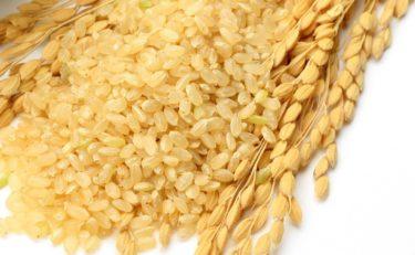 玄米がスゴイ!食べるだけで免疫力アップするスーパーフード!